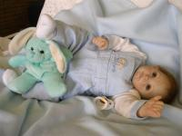 teddy02lg.jpg
